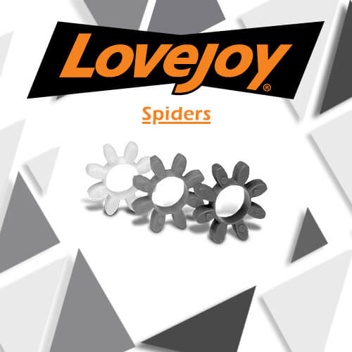 Lovejoy Spiders