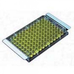 2mil Sterile Film SealPlate for Microplates