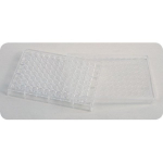 Clear Plastic Well Plate